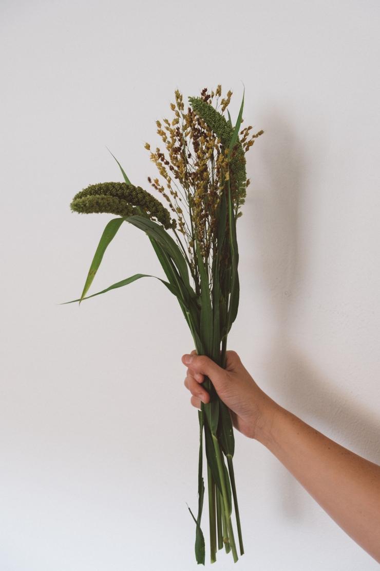 sept.flowers