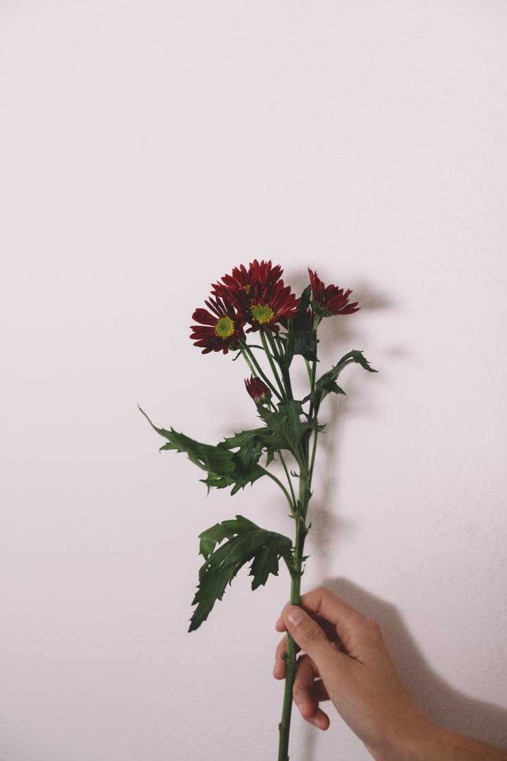 TJ_FLOWERS3-10