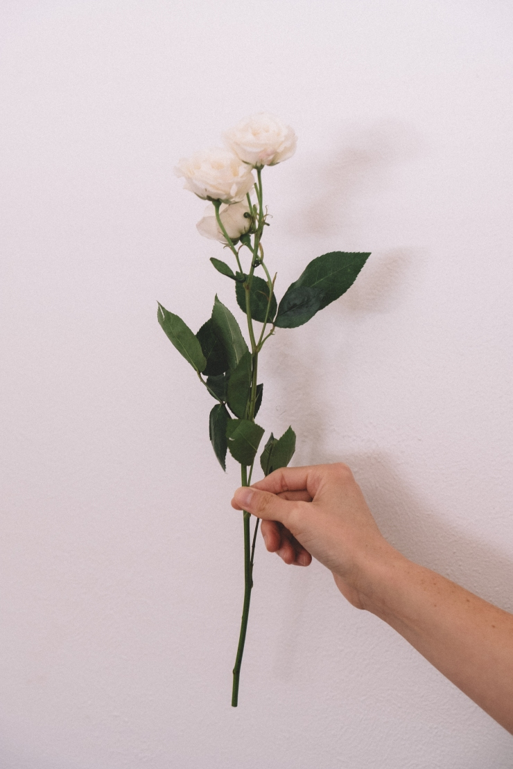 NOV-FLOWERS-4